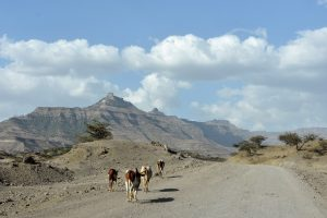 Ethiopia, Landscape in Lalibela, EastAfricaTourOperator.net