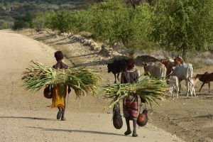 Ethiopia, Omo Valley Tribe, EastAfricaTourOperator.net