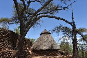 Ethiopia, Cultural house and generation pole in Konso, EastAfricaTourOperator.net